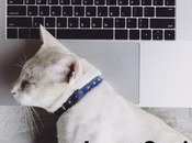Lazy Social Media Moves Avoid Today Costs
