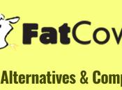 Best FatCow Alternatives Competitors Under Budget 2021