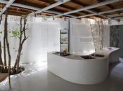 Interiors: Studio