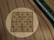'Endless Knot' Crop Circle