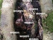 Vaguetionary Words Week 'Legitimate Rape' 'Misspoke'