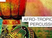 Samplephonics Afro-Tropical Percussion