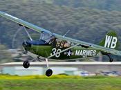 Cessna OE-1 Bird