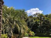 Lamorran House Garden