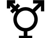 Transgender Wars: Revisited