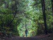 National Trails Day: Free Entrance, Fishing Volunteering Local Parks