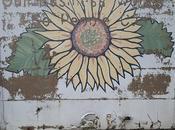 Professional Muralist Process Demo Painted Murals This Backyard Building Cedar