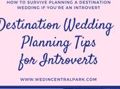 Survive Planning Destination Wedding You're Introvert