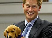 Prince Harry Already King Awesome, After Naked Photos