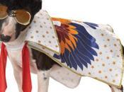 Best Halloween Costumes Pets 2012: Funniest, Prettiest, Cleverest More...
