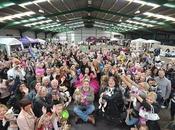 Dogs Breaks Britain's World Record!