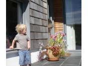 Greendor Eco-homes Dorchester Great Success