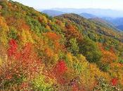 Knoxville Named U.S. Travel Destinations October