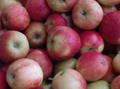Ambrosia; Braeburn; Crimson Crisp