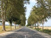 Provence: Part
