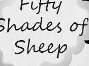 Fifty Shades Sheep