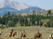 Ordinary Beauty Yellowstone National Park