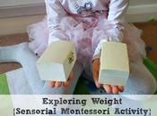 Exploring Weight {Sensorial Montessori Activity}