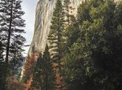 Yosemite Photos)