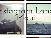 Instagram Land: Maui