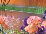 Contemporary Colour Garden Review