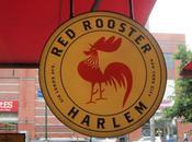 Rooster Harlem
