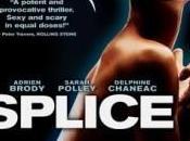 Splice Life