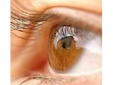 Tips Improve Your Vision Naturally Good Eyesight Reflection Health Majority Senses Body Receives Related Eyesight.