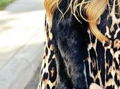 Cheetah Night
