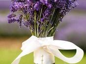 Lavender World, Bride! Wedding Ideas Pictures