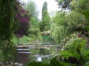 Photo Essay: Giverny Water Pond: Part Monet's Legacy