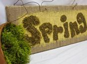 First Sign Spring….literally, It's Sign.