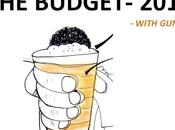 2013 Budget- Guna's Opinion