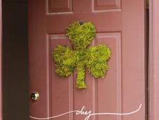 Make Moss Shamrock Your Door