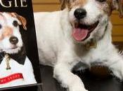 'The Artist' Uggie Comes Retirement Good Cause