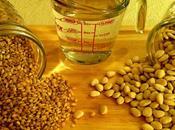 Hearty Lima Bean Barley Chowder