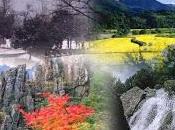 Korea's Seasons