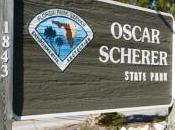 Oscar Scherer State Park, Hiking Florida Style