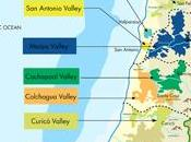 Chilean Wine Flavors Derived from Most Unique Conditions Delicious Examples