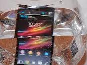 Sony Xperia Nexus What Your Pick?