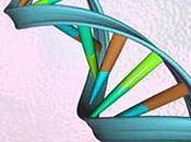 Gene Patents Soon Affect Genetic Testing