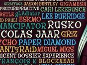 Lightning Bottle 2013: Conscious Festival
