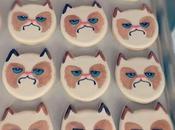 Grumpy Even Hates Cookies