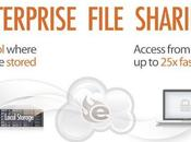 Egnyte: Third Party Cloud Storage Offers File Sharing Option