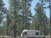 View Mobile Office White Mountains Arizona