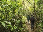 Project Week: Peru Amazon Rainforest Conservation