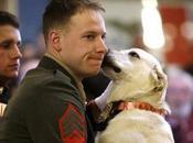Marine Reunited with Military Working