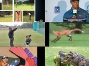 Golf Videos Week (5/21)