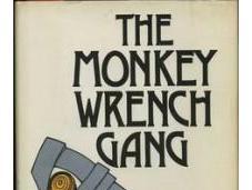 Book Review: Edward Abbey's Monkey Wrench Gang