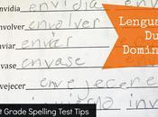 Lenguaje Dual Domingo Grade Spelling Tips